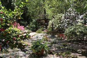 Some of the garden at Kubba Roonga