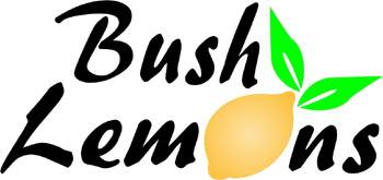 bush_lemons_lg